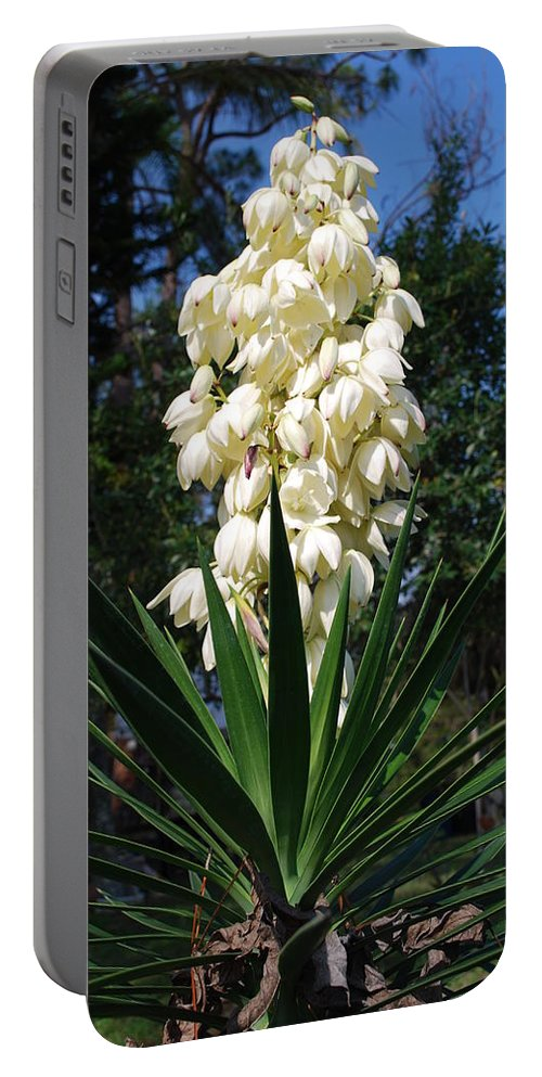 Full Bloom Portable Battery Charger featuring the photograph Yucca by Robert Floyd