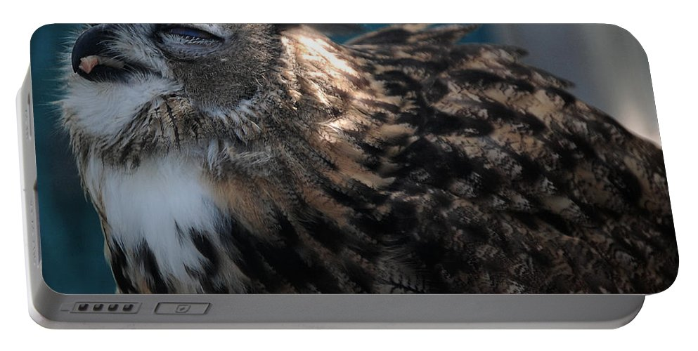 Eagle Portable Battery Charger featuring the photograph Yummy by Leticia Latocki