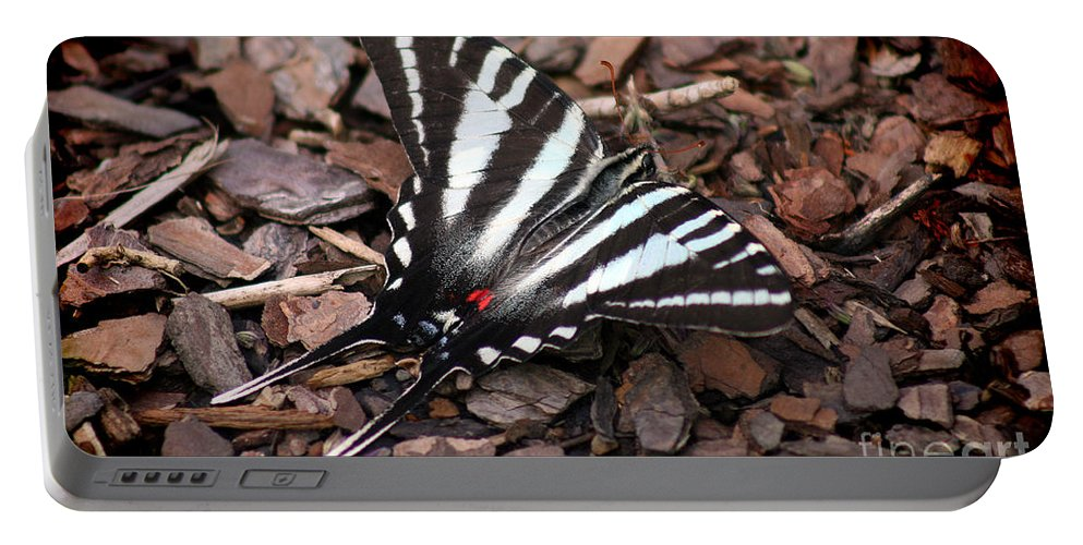 Zebra Portable Battery Charger featuring the photograph Zebra Swallowtail Butterfly by Karen Adams
