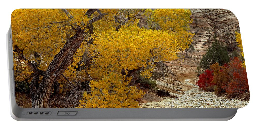 Autumn Portable Battery Charger featuring the photograph Zion National Park Autumn by Leland D Howard