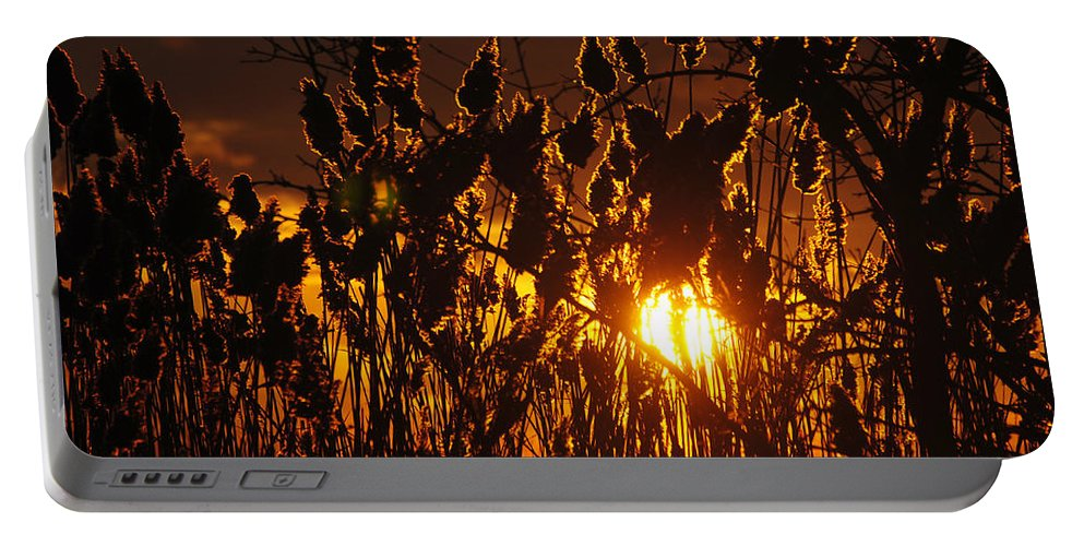 Portable Battery Charger featuring the photograph 05 Sunset by Michael Frank Jr