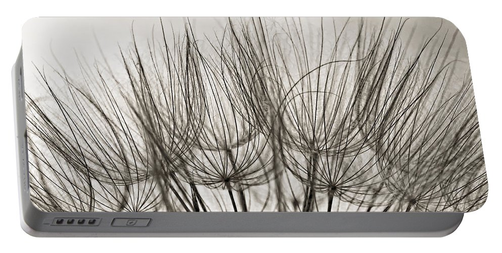Macro Portable Battery Charger featuring the photograph A Delicate World Monochrome by Steve Harrington
