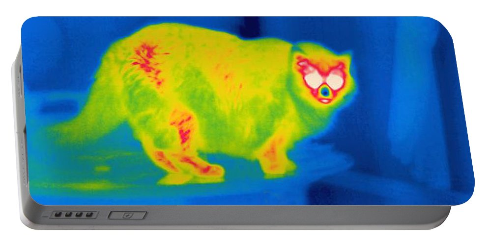 Thermogram Portable Battery Charger featuring the photograph A Thermogram Of A Long Haired Cat by Ted Kinsman