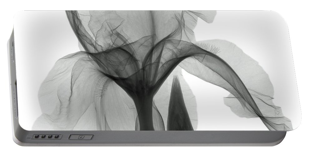 Xray Portable Battery Charger featuring the photograph An X-ray Of An Iris Flower by Ted Kinsman