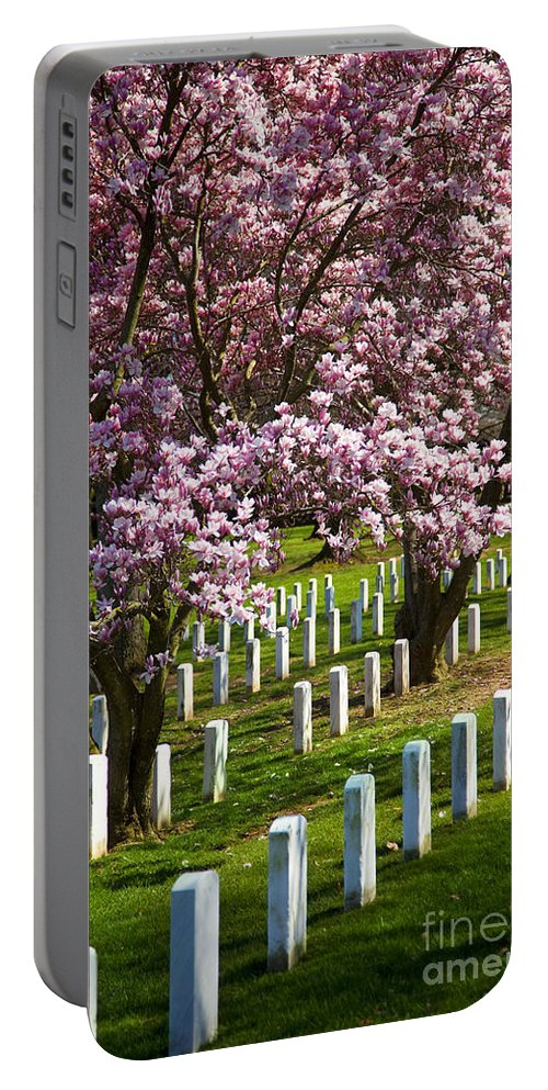 Blossoms Portable Battery Charger featuring the photograph Arlington Cherry Trees by Brian Jannsen
