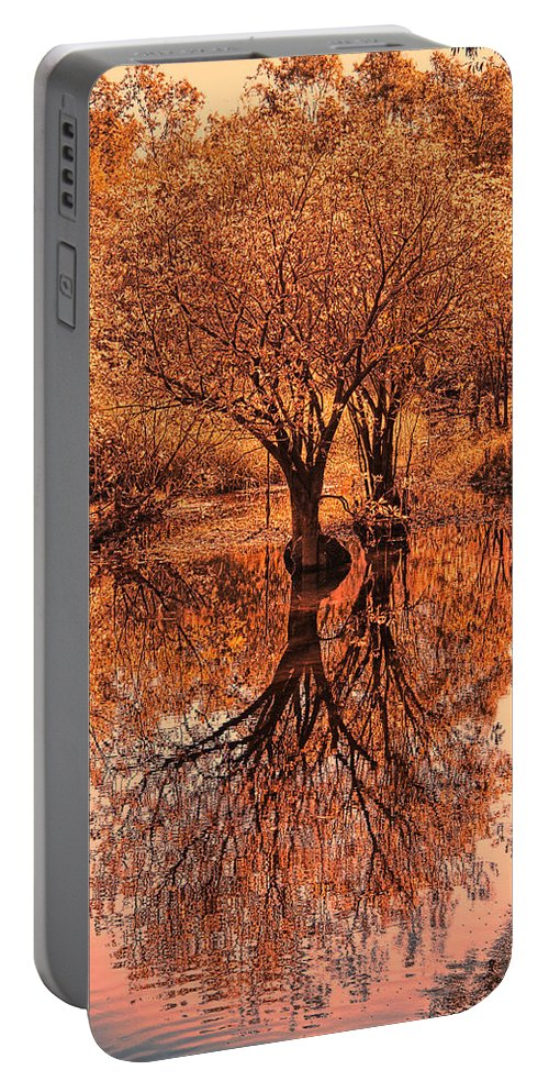 Autumn Portable Battery Charger featuring the photograph Autumn Reflections by Douglas Barnard