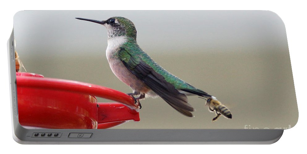 Hummingbird Portable Battery Charger featuring the photograph Birds And Bee's by Lori Tordsen