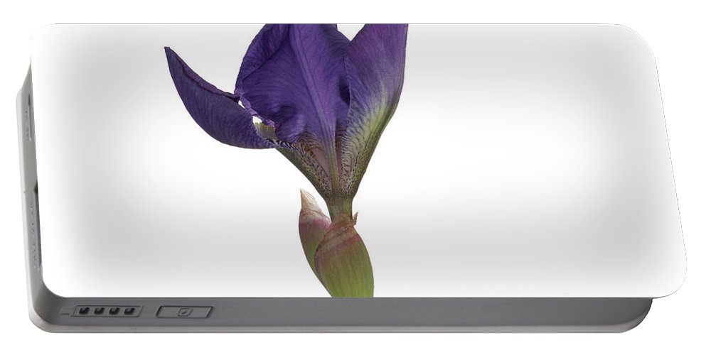 Flora Portable Battery Charger featuring the photograph Blue Iris Blooming by Ted Kinsman