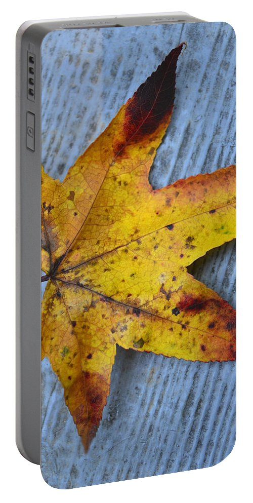 Leaf Portable Battery Charger featuring the photograph Burnished Gold On Wood by Sandi OReilly