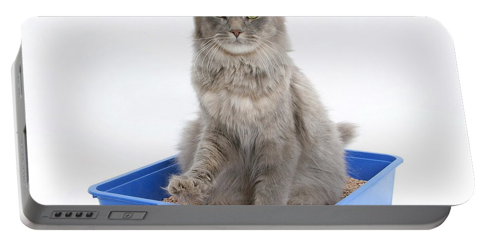 Animal Portable Battery Charger featuring the photograph Cat Using Litter Tray by Mark Taylor