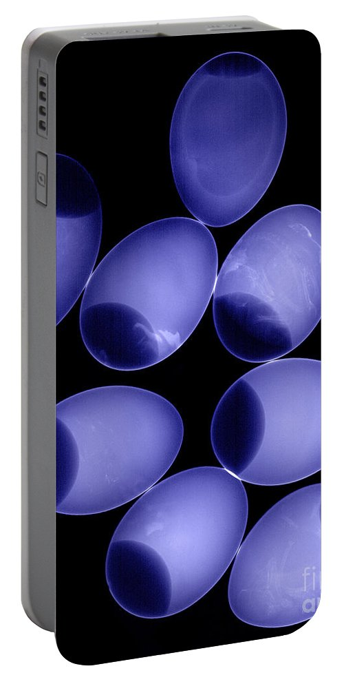 X-ray Portable Battery Charger featuring the photograph Chicken Eggs by Ted Kinsman
