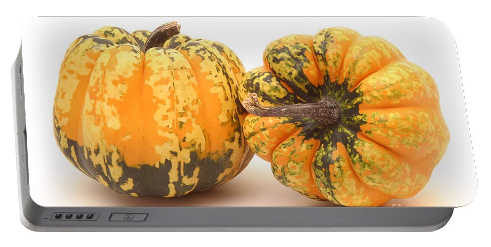 Gourd Portable Battery Charger featuring the photograph Decorative Squash by Ted Kinsman