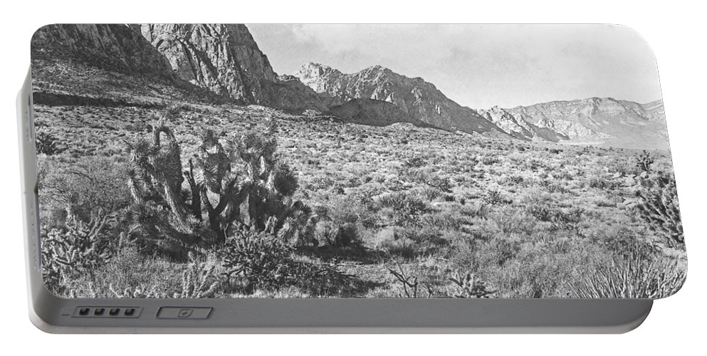 Desert Beauty Portable Battery Charger featuring the photograph Desert Beauty by Frank Wilson