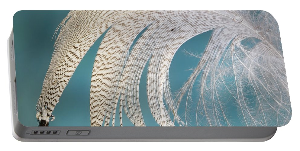 Feather Portable Battery Charger featuring the photograph Droopy Feather by Jean Noren