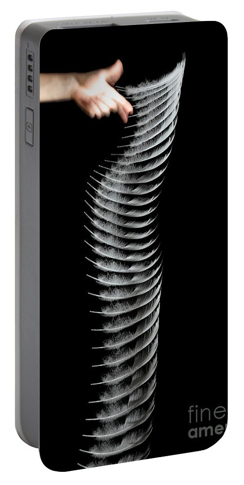 Feather Portable Battery Charger featuring the photograph Dropping A Feather by Ted Kinsman