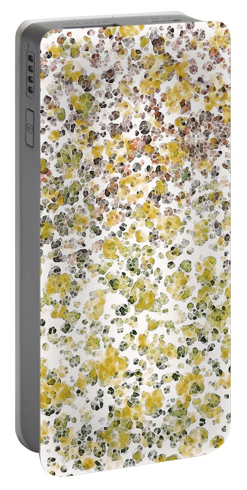 Abstract Portable Battery Charger featuring the digital art Earthtones Abstract by Debbie Portwood