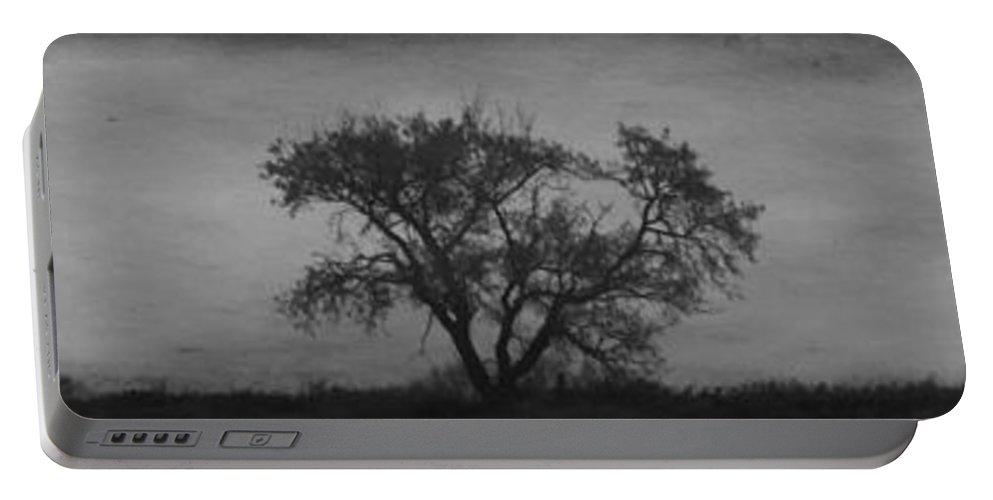 Tree Portable Battery Charger featuring the photograph East Wind by The Artist Project