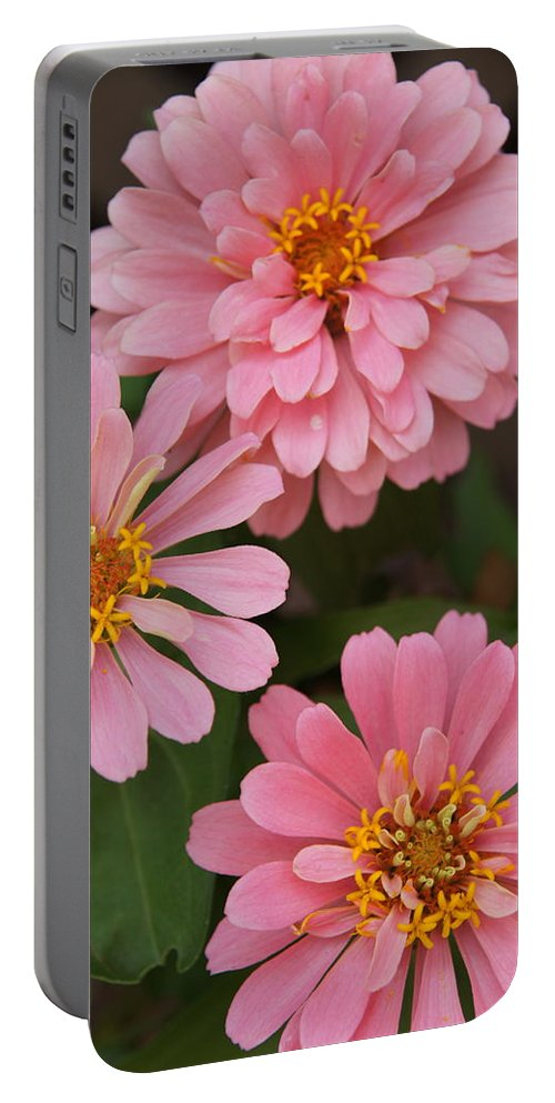 Flowers Portable Battery Charger featuring the photograph Flowers by Megan Cohen