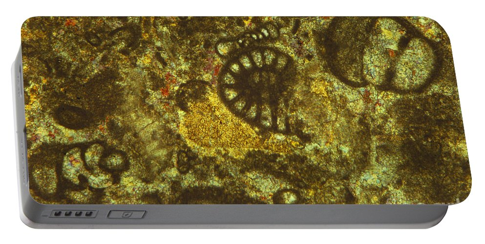 Science Portable Battery Charger featuring the photograph Foraminiferous Limestone Lm by M. I. Walker