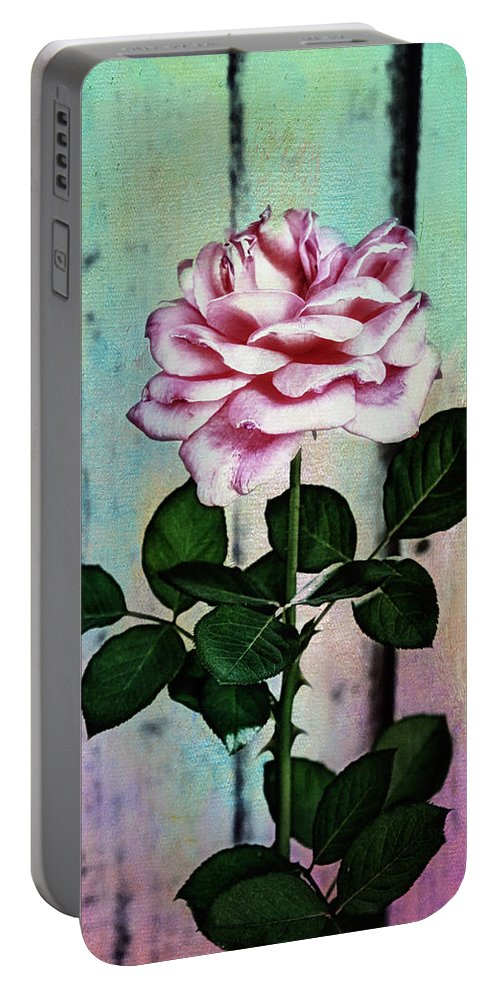 Photo Collage Portable Battery Charger featuring the photograph Garden Rose by Linda Dunn
