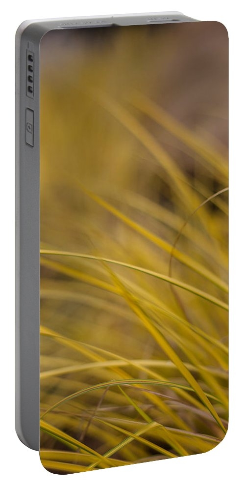 Grass Portable Battery Charger featuring the photograph Grass Abstract 1 by Mike Reid