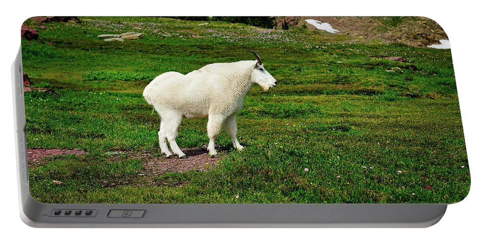 Glacier National Park Portable Battery Charger featuring the photograph Mountain Goat by Greg Norrell