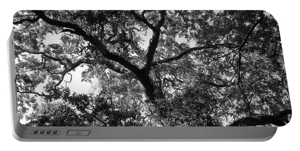 Trees Portable Battery Charger featuring the photograph Nature's Network by Maria Bonnier-Perez
