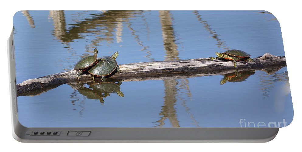 Turtles Portable Battery Charger featuring the photograph Piggy Back by Lori Tordsen