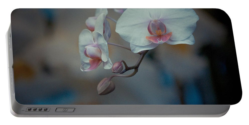 Flowers Portable Battery Charger featuring the photograph Pretty Pastels by Trish Tritz