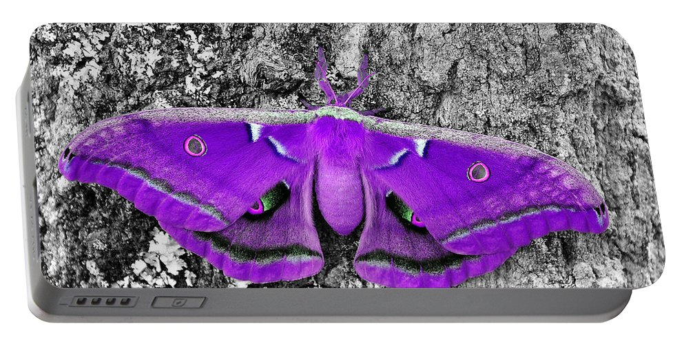 Moth Portable Battery Charger featuring the photograph Purple Polyphemus by Al Powell Photography USA