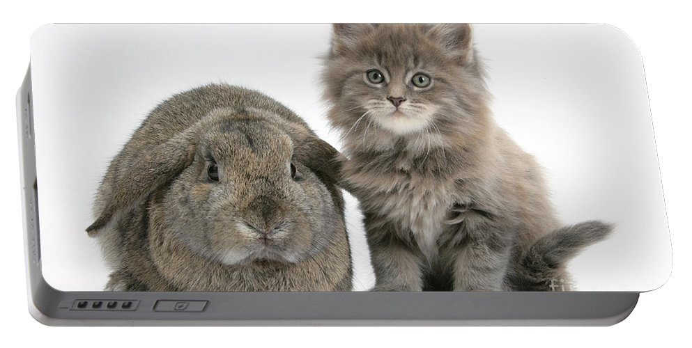 Animal Portable Battery Charger featuring the photograph Rabbit And Kitten by Mark Taylor