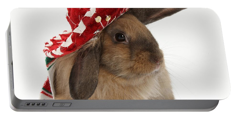 Animal Portable Battery Charger featuring the photograph Rabbit Wearing A Hat by Mark Taylor