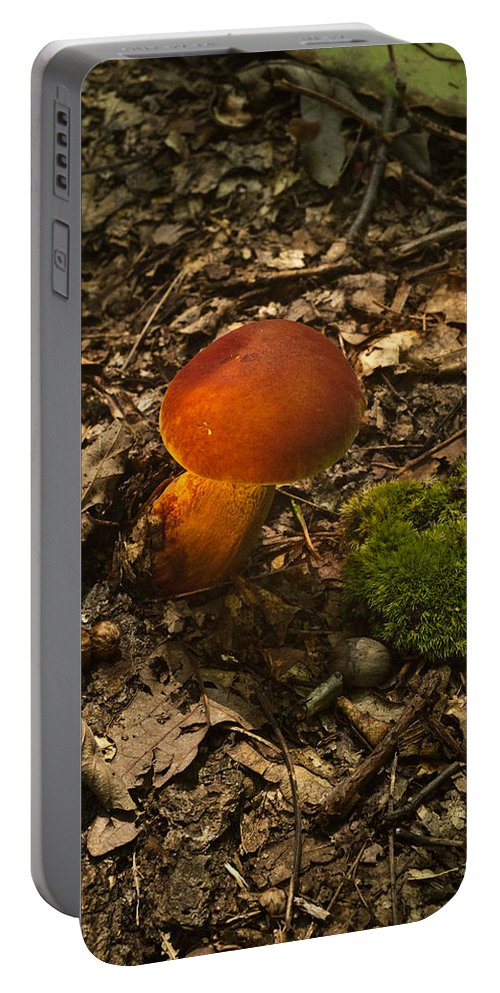 Red Portable Battery Charger featuring the photograph Red Caped Mushroom 3 by Douglas Barnett