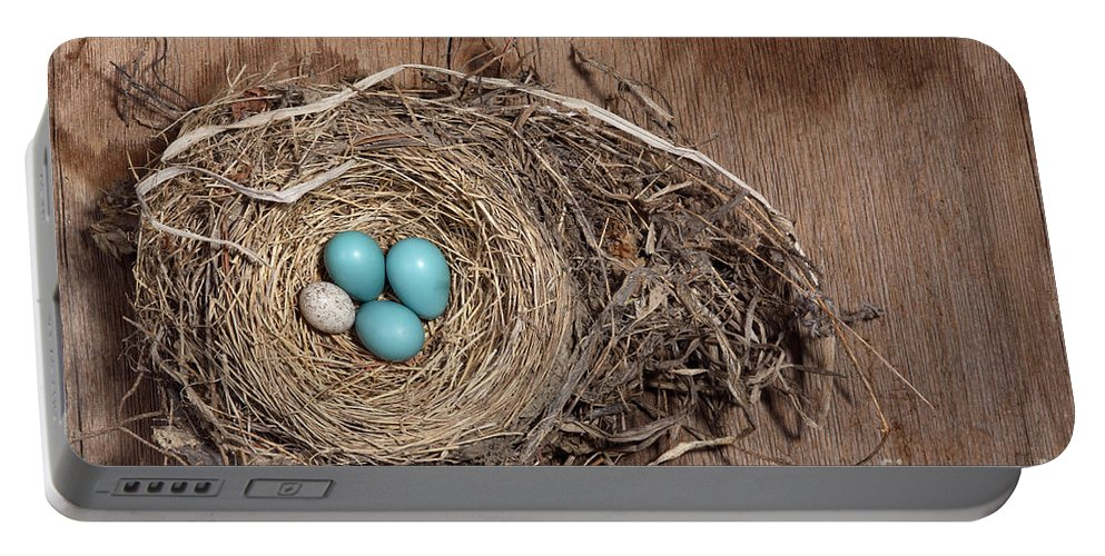 American Robin Portable Battery Charger featuring the photograph Robins Nest And Cowbird Egg by Ted Kinsman