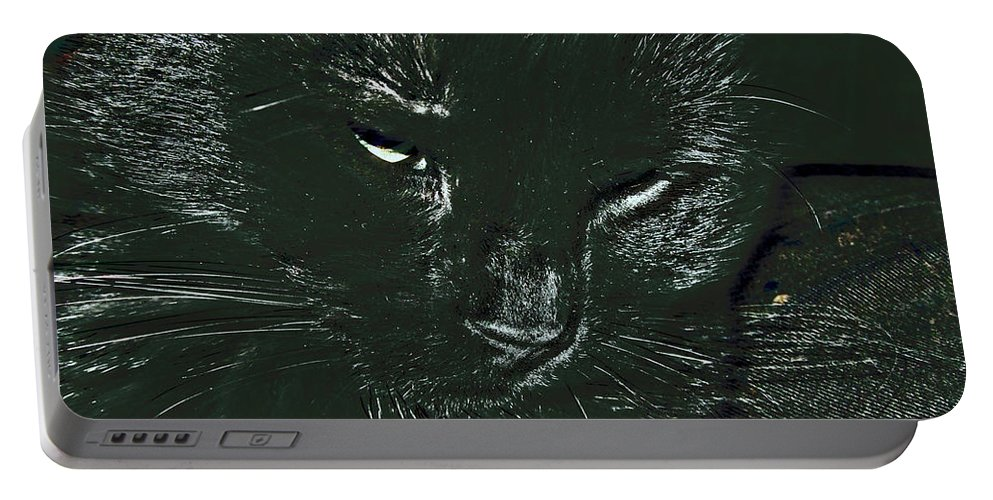 Animal Portable Battery Charger featuring the photograph Satin by Donna Brown