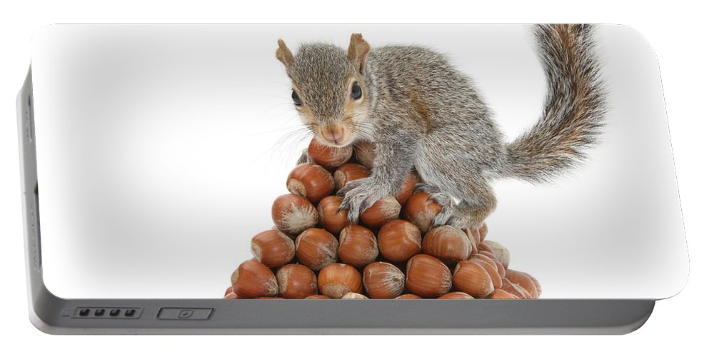 Nature Portable Battery Charger featuring the photograph Squirrel And Nut Pyramid by Mark Taylor