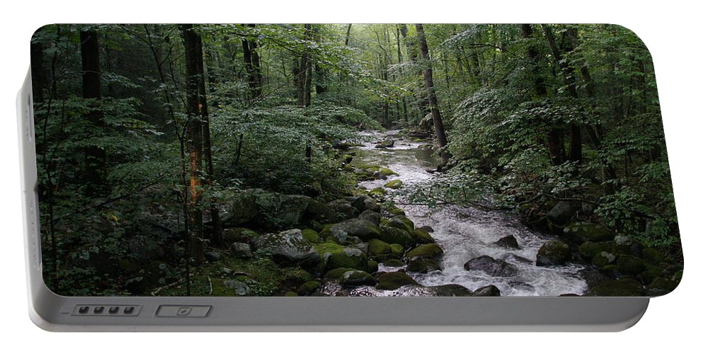 Landscape Portable Battery Charger featuring the photograph Stream by Megan Cohen