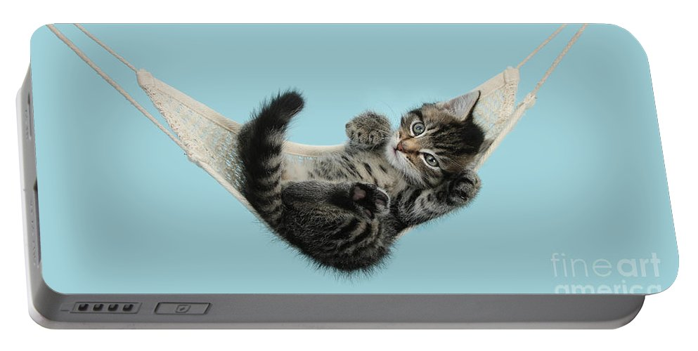 Animal Portable Battery Charger featuring the photograph Tabby Kitten In Hammock by Mark Taylor