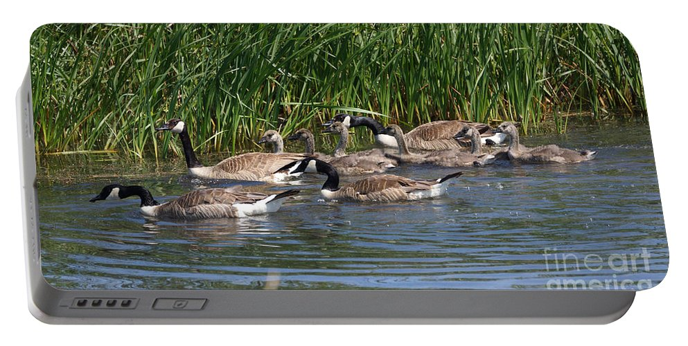 Goose Portable Battery Charger featuring the photograph The Great Escape by Lori Tordsen