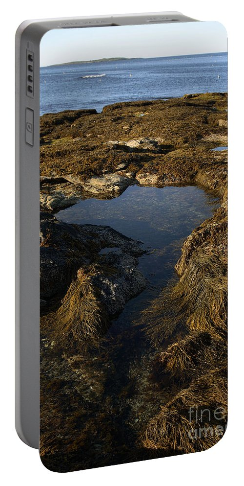 Tide Portable Battery Charger featuring the photograph Tidepool In Maine by Ted Kinsman