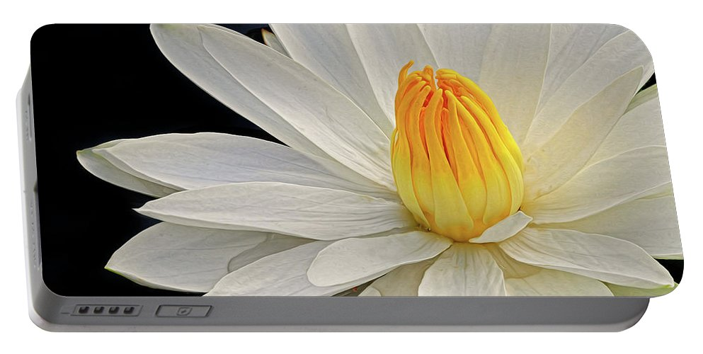 Waterlily Portable Battery Charger featuring the photograph White Waterlily by Dave Mills