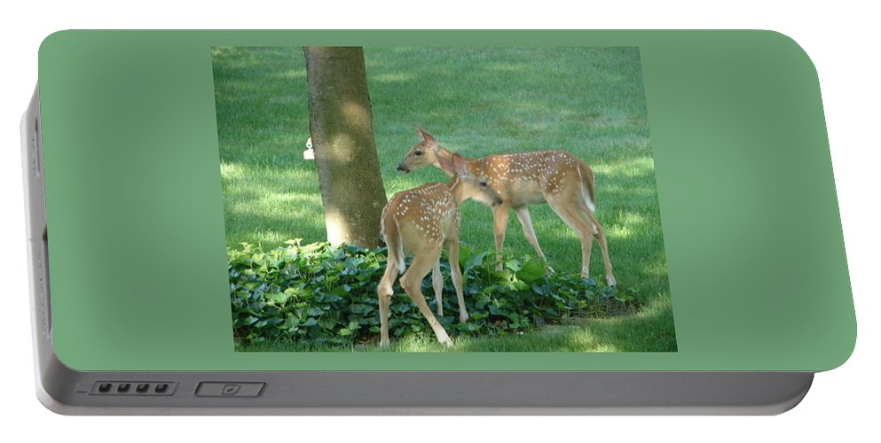 Witetail Deer Portable Battery Charger featuring the photograph Whitetail Fawns by Randy J Heath