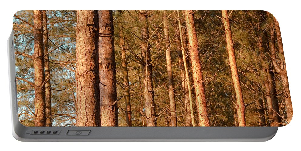 Abstract Portable Battery Charger featuring the photograph Woodland by Tom Gowanlock
