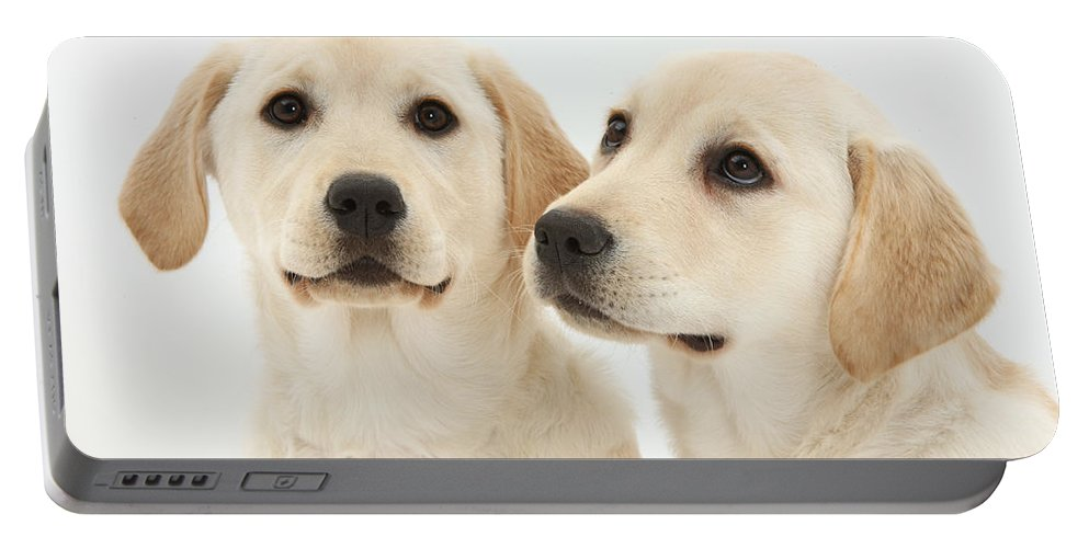 Nature Portable Battery Charger featuring the photograph Yellow Labrador Retriever Pups by Mark Taylor