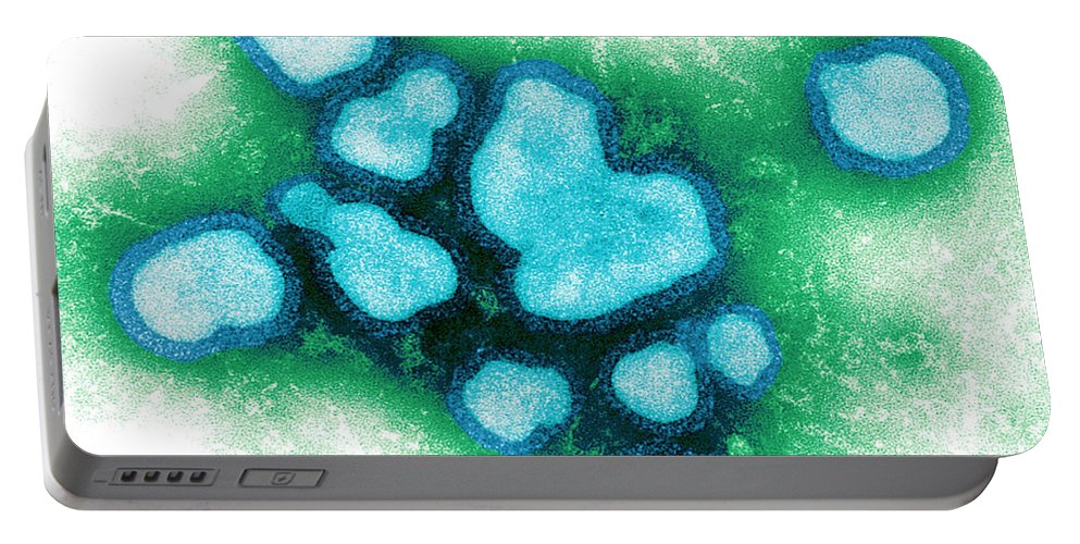 Electron Micrograph Portable Battery Charger featuring the photograph Influenza A Virus by Science Source