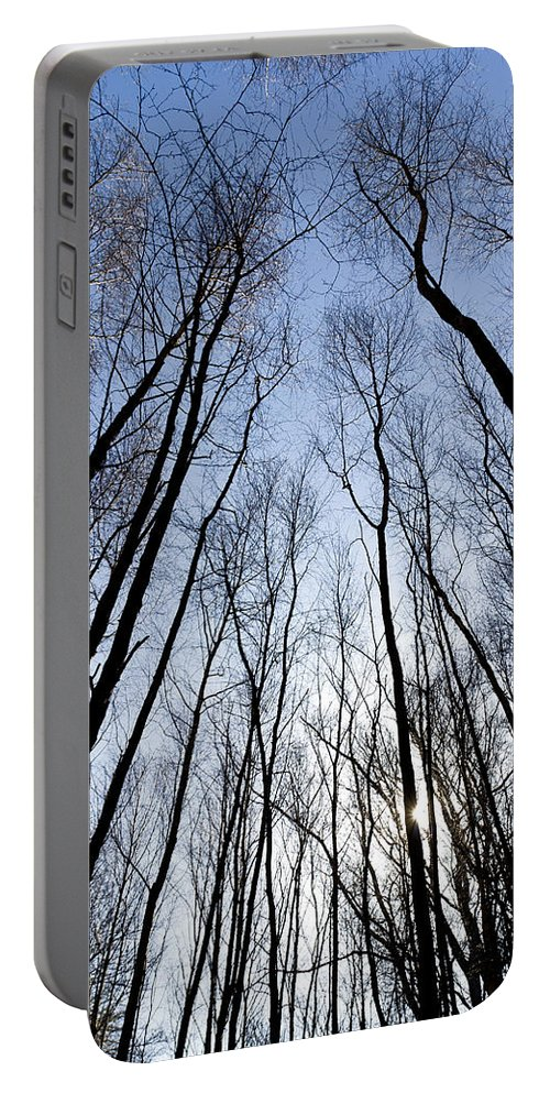 Tree Portable Battery Charger featuring the photograph Trees In Epping Forest by David Pyatt