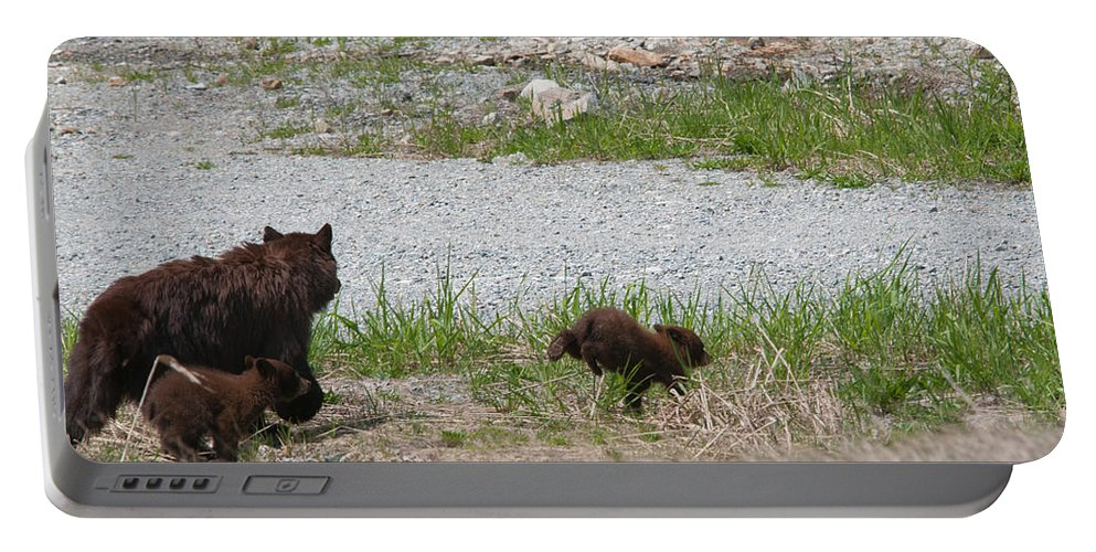 Animals Portable Battery Charger featuring the digital art Black Bear Family by Carol Ailles