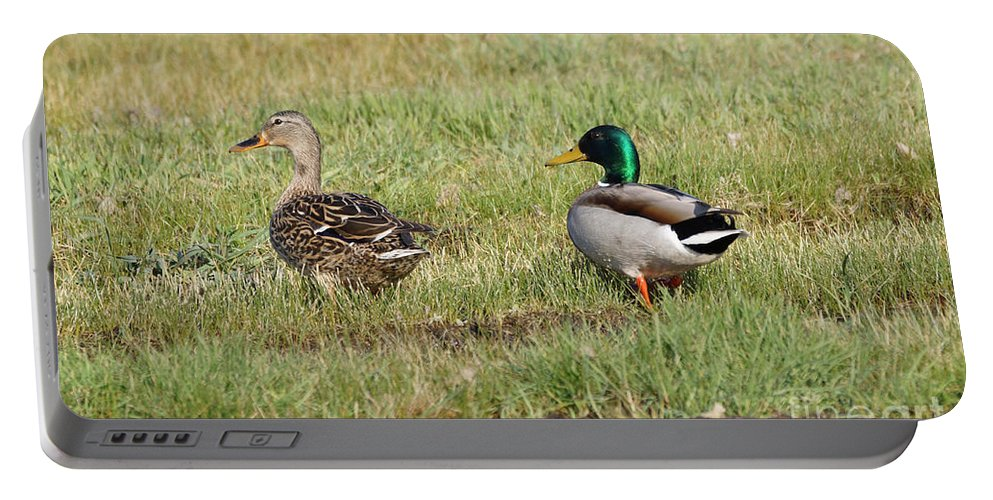 Mallard Portable Battery Charger featuring the photograph Mallard Ducks by Lori Tordsen
