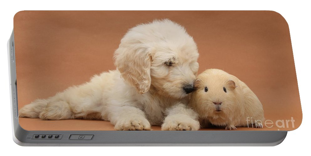 Animal Portable Battery Charger featuring the photograph Puppy And Guinea Pig by Mark Taylor
