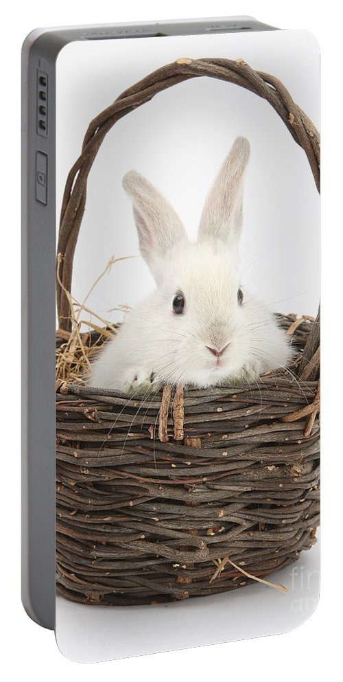 Animal Portable Battery Charger featuring the photograph Bunny In A Basket by Mark Taylor